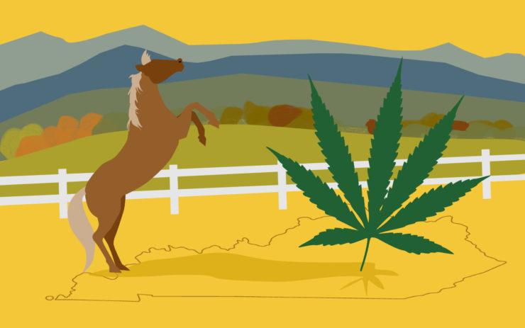 State of Cannabis: Kentucky