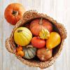 Recipe: DNA-Repairing Pumpkin Curry