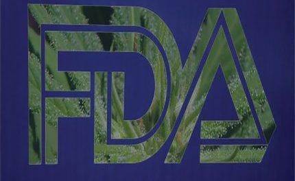 Statement on Cannabidiol for the FDA