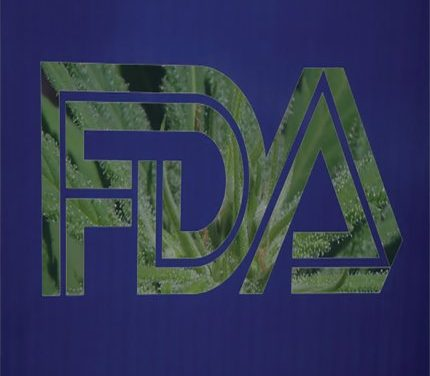 Statement on Cannabidiol for the FDA
