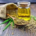 Hemp Seed Market in the U.S: The Challenges and Realities