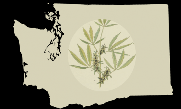 Washington Marijuana: State May Allow CBD Additives