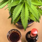 The Law on CBD-Infused Alcoholic Beverages