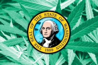 Washington Cannabis: The Proposed Hemp Overhaul is Here